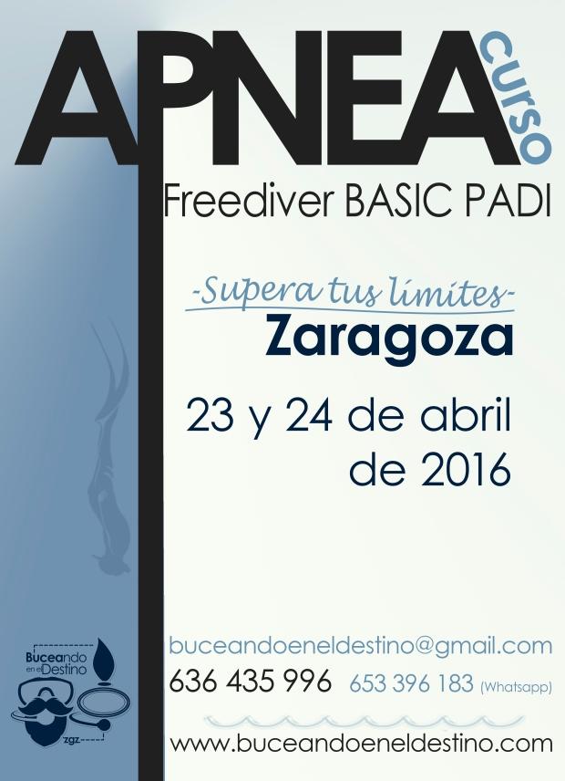 curso apnea padi freediver basic en zaragoza abril 2016