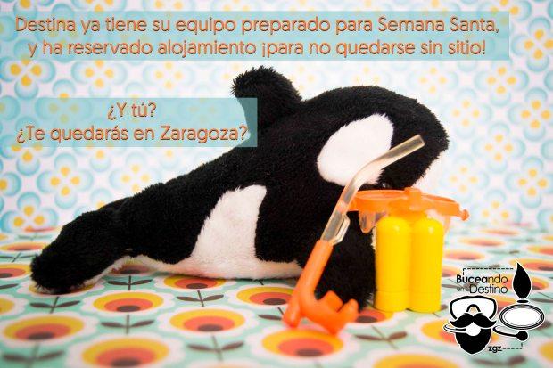 buceo, submarinismo, bautizo, padi, DSD, discover, bautismo, regalo Zaragoza