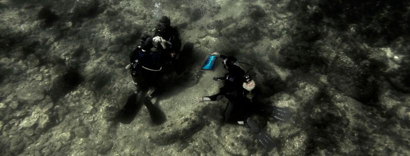 Repasando los ejercicos del open Water Diver bajo el agua, esto sí que es buceo on-line!